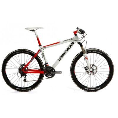 gepida asgard team carbon mountain bike